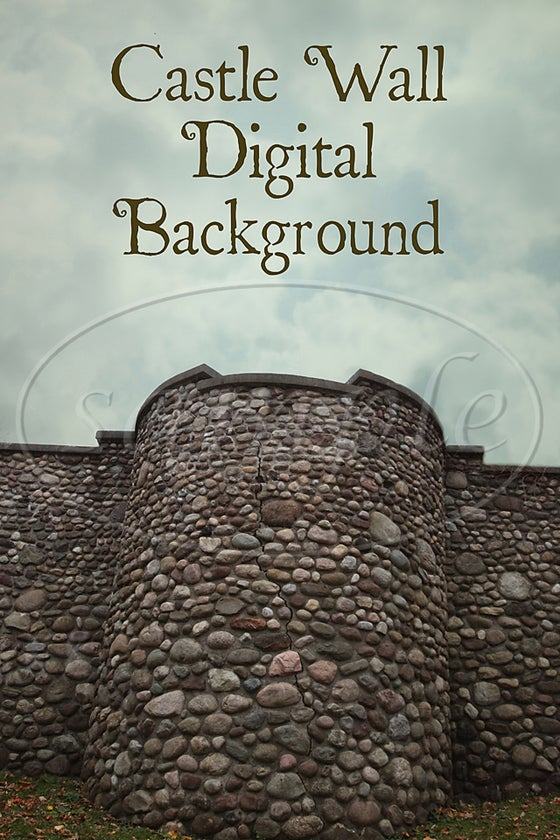 Image of Castle Wall Digital Background