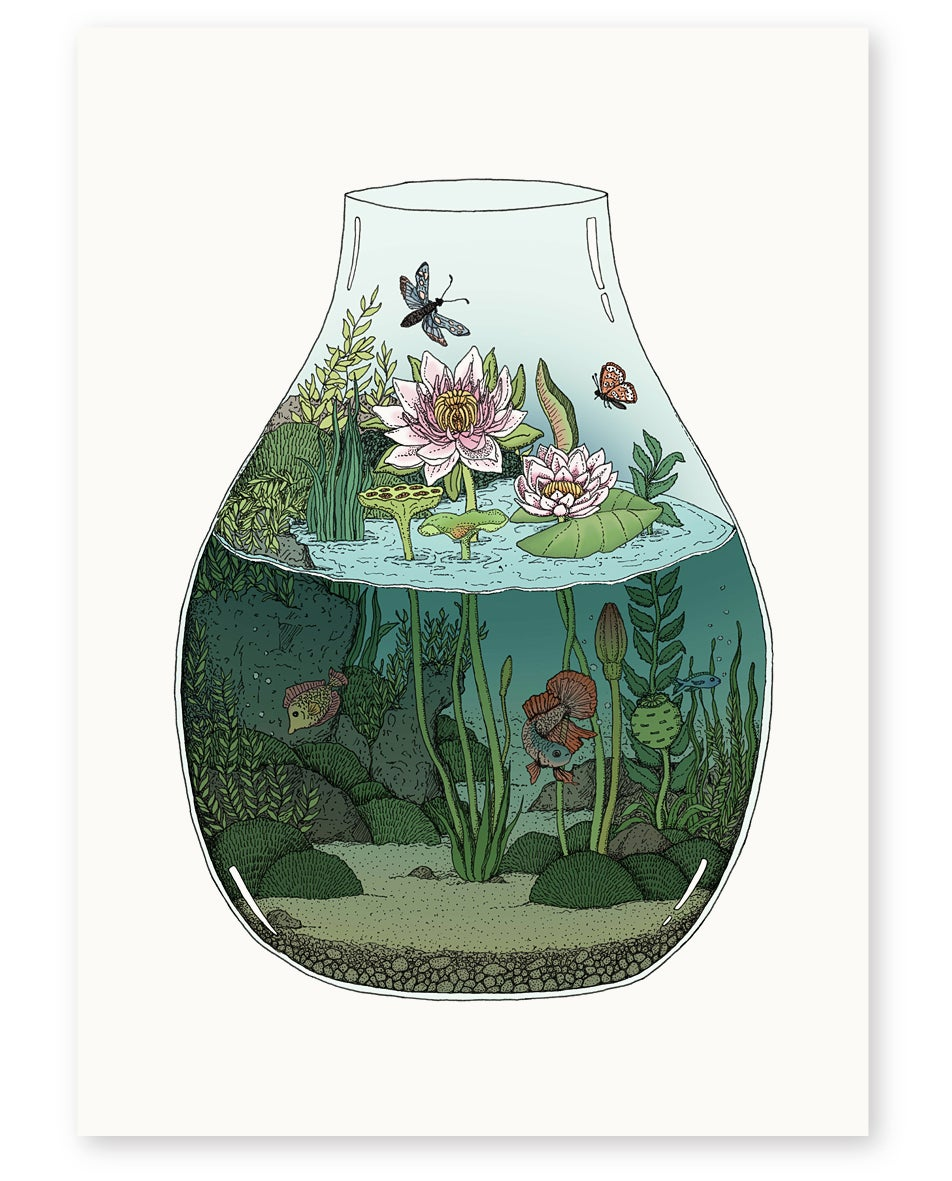 Image of 'Waterlilies' Limited Edition Art Print
