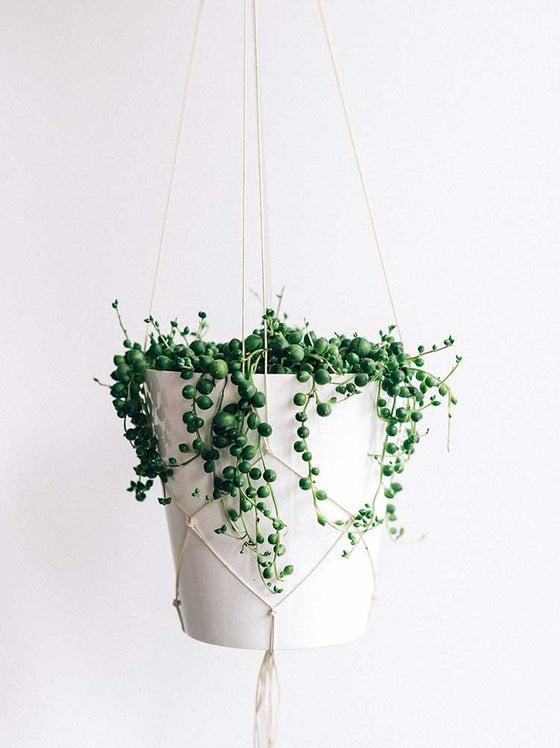 Image of Pearl Strings Hanger