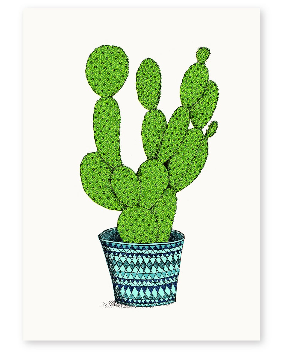 Image of 'Bunny Ears Cactus' A4 Limited Edition Art Print
