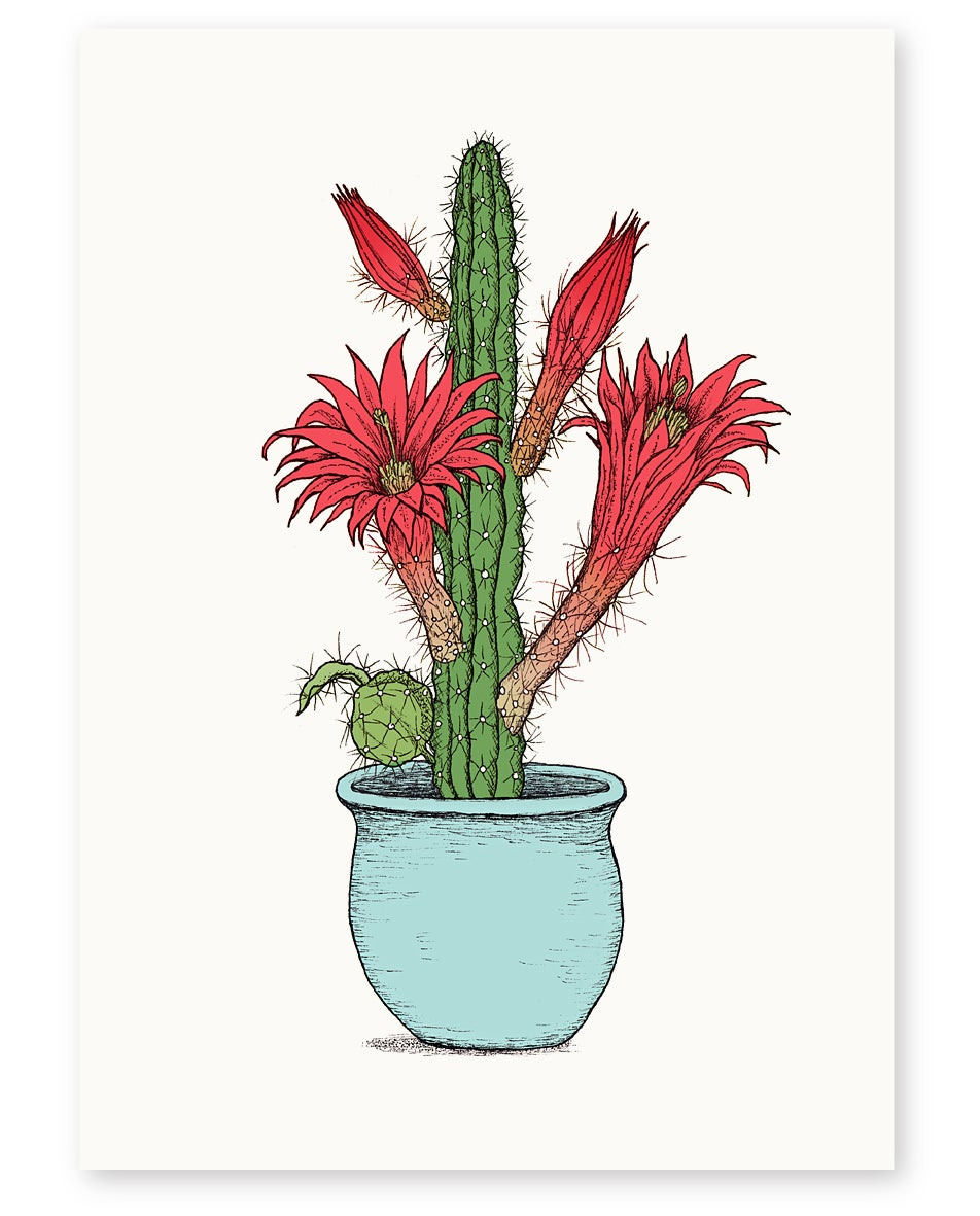 Image of 'Cactus Pot' A4 Limited Edition Art Print