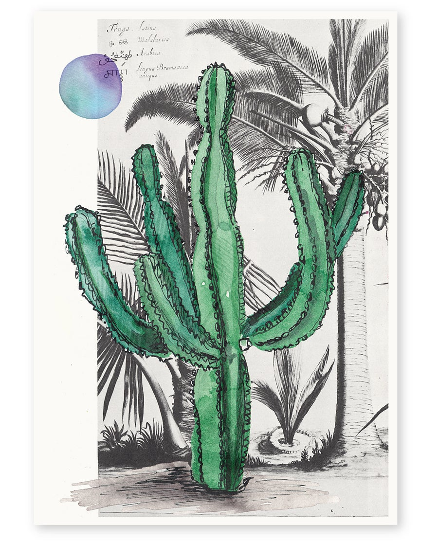 Image of 'Palm Springs' Art Print