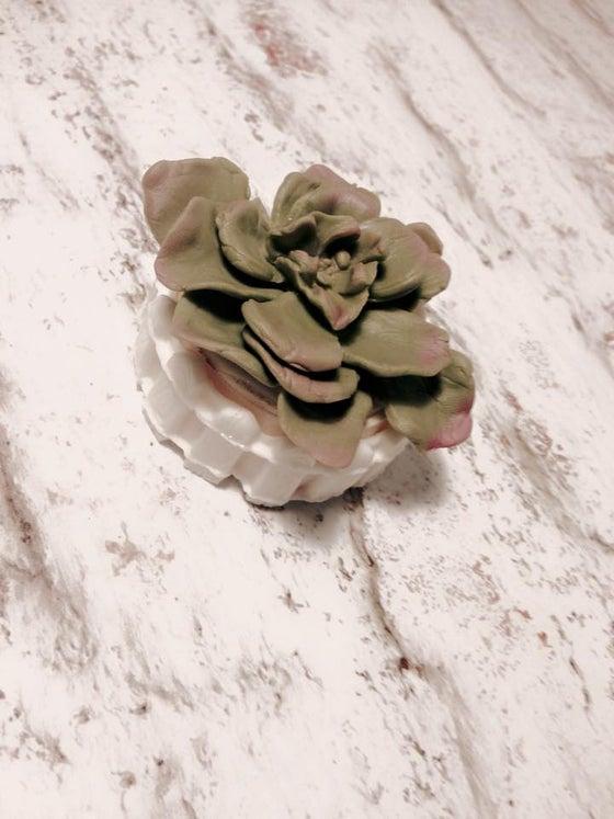 Image of Succulent fondant Oreo Garden 1 pc