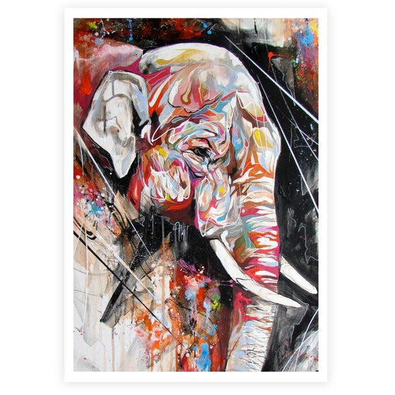 "Image of ""Indian Elephant"" OPEN EDITION PRINT ON FINE ART PAPER"