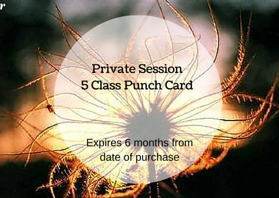 Image of Private Session 5 Class Punch Card