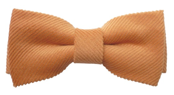 Image of Salmon Corduroy Bow tie