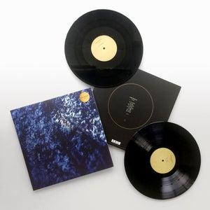 Image of Insides Double Vinyl