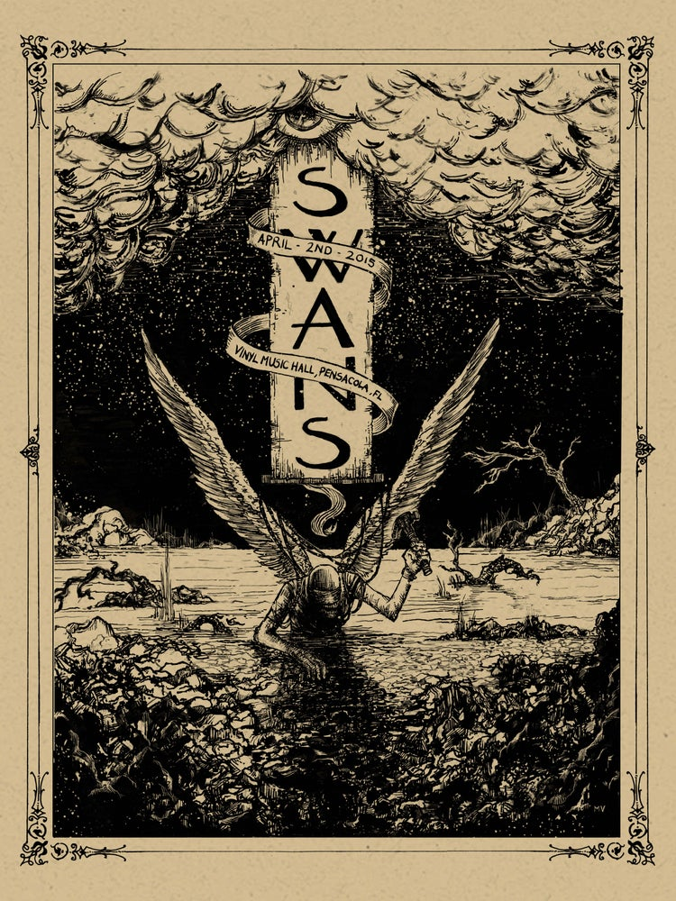 Image of Swans