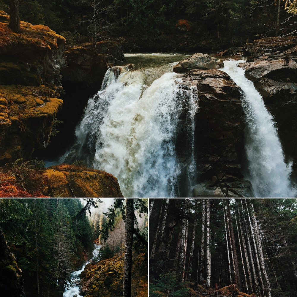 Image of Mt. Baker Forest print set by Ryan Russell
