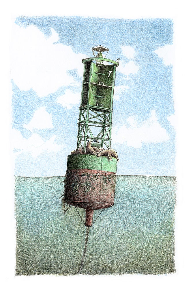 Image of Green buoy