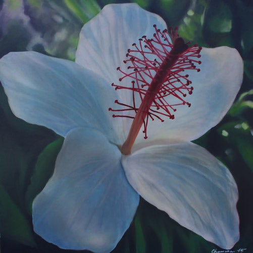 Image of Kokio ke`o ke`o, No 2 (30 in x 30 in)