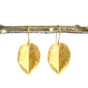 Image of Medium Ohi'a leaf earrings gold