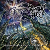 Image of NEW!!! RIPPING FLESH Episodes Of Chaotic Extinction CD