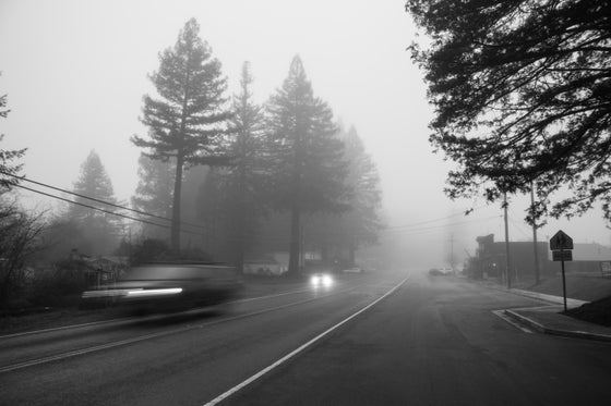 Image of Misty Morning Fog