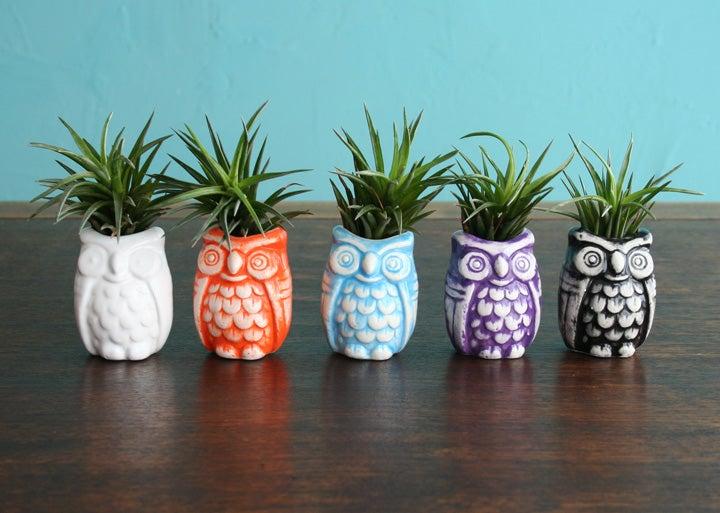 Image of Owl Bud Vase