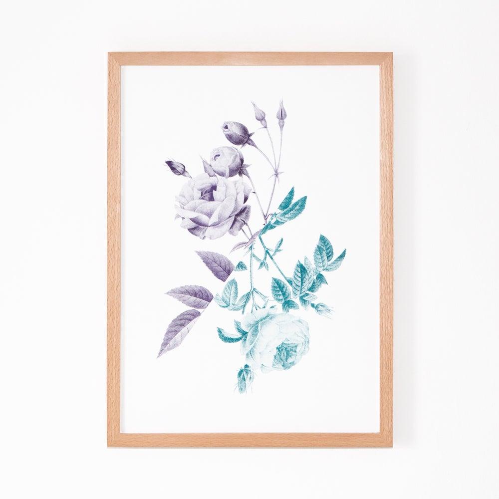 Image of Rose III (Teal & Purple)