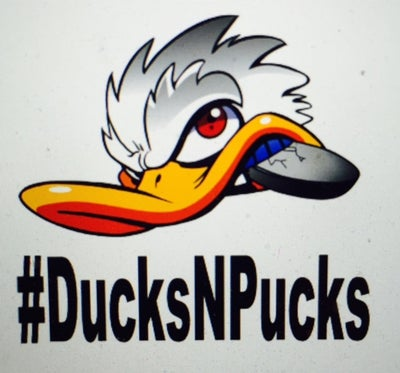 Image of #DucksNPucks Vinyl Car Decal