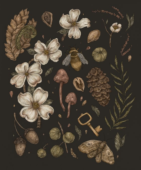 Image of Nature Walks Print