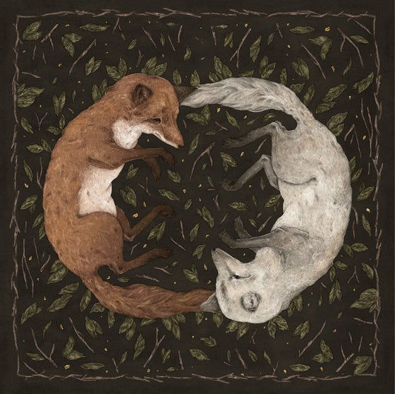 Image of Foxes Print