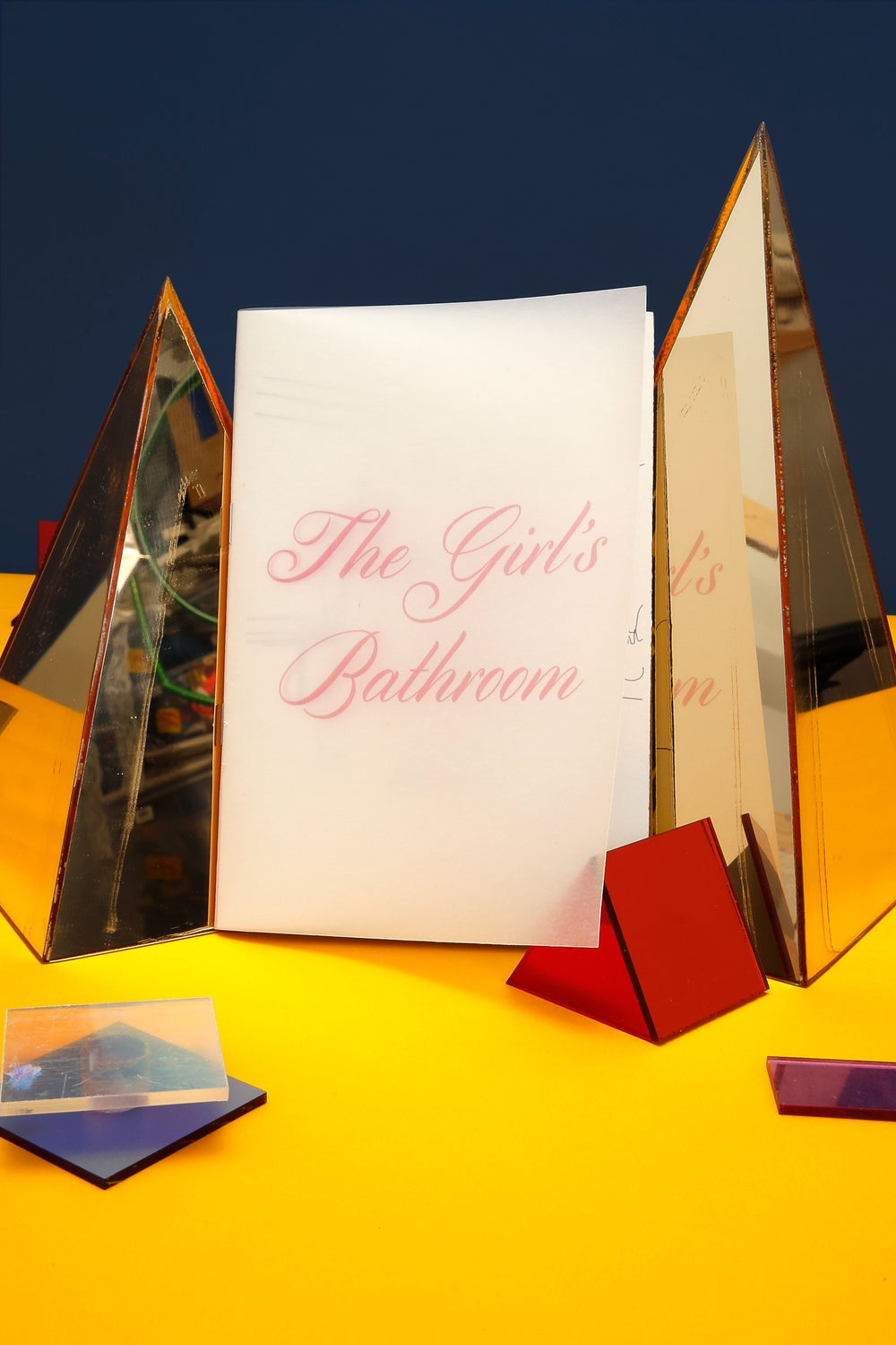 Image of The Girl's Bathroom