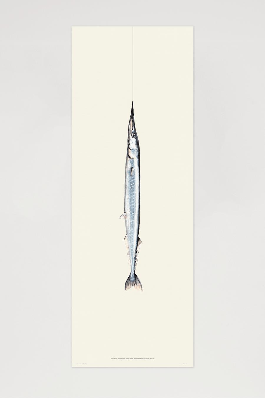 Image of El Hornfisk
