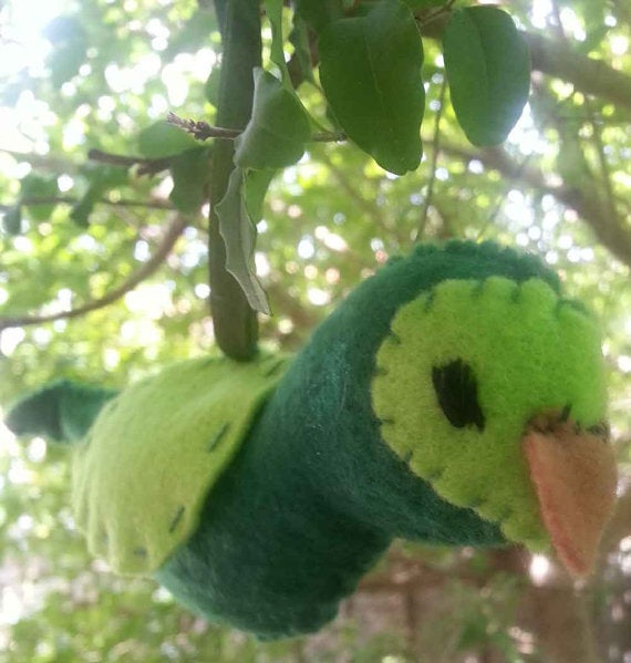 Image of DIY Kakapo kit - make your own version of this critically endangered bird