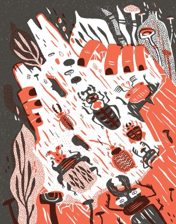 Image of Beetle Log Framed Print by Pamela Wishbow