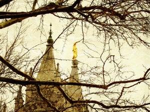 Image of Salt Lake City Utah LDS Mormon Temple Art 006 - Personalized LDS Temple Art