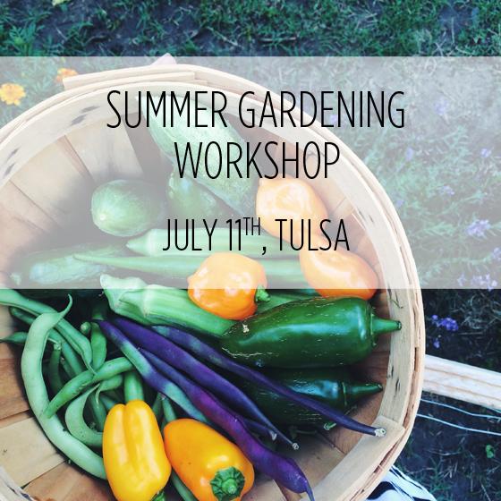 Image of July 11th workshop
