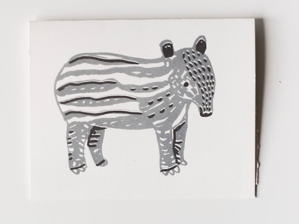 Image of Tapir (It's a kind of animal)
