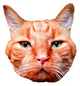 Image of Ming Ming Head Sticker