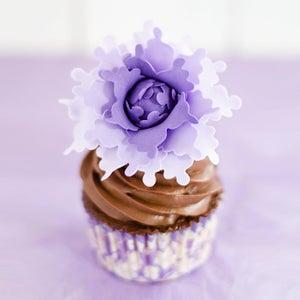Image of Taller de Supercupcakes 2