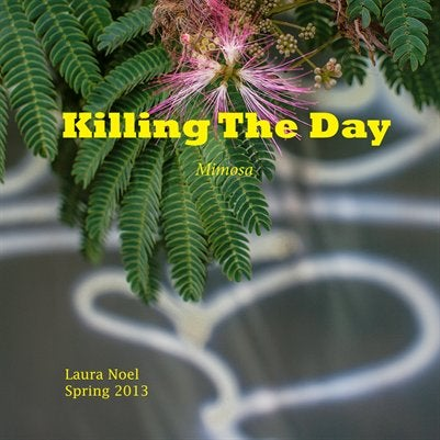 Image of Killing The Day Spring 2013/Volume 2/Mimosa