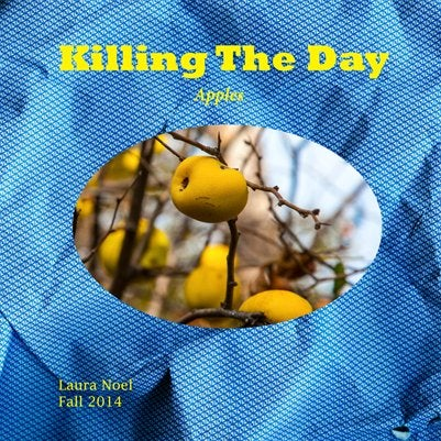 Image of Killing The Day/Fall 2014/Volume 8/Apples