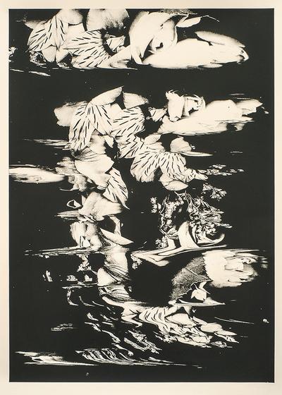 Image of Botanical / Poster
