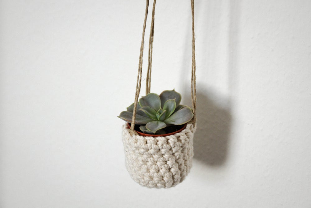 Image of Mini plant hanger