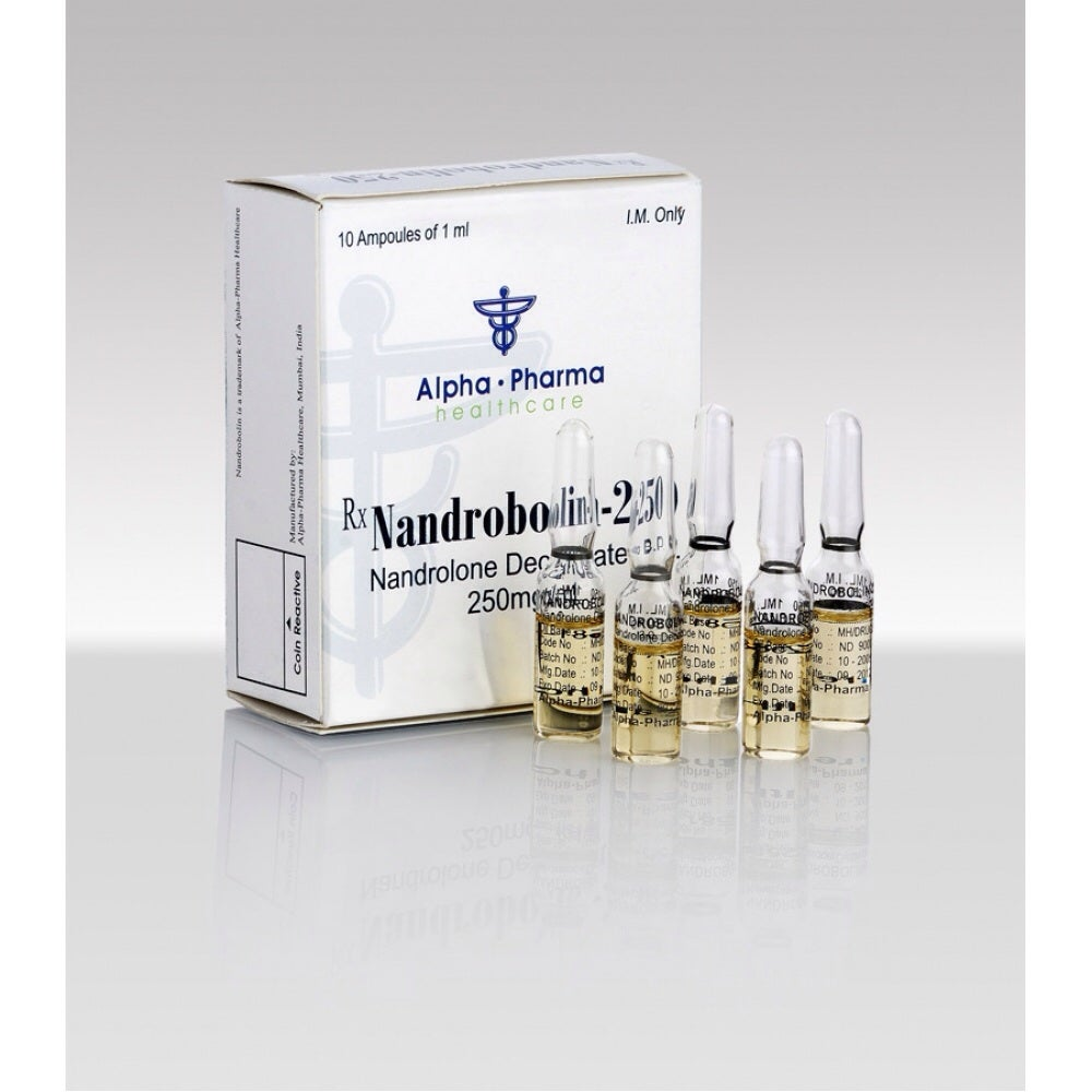 nandrolone rapid