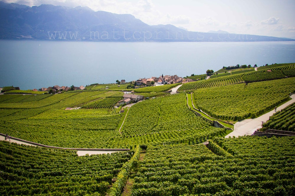 Image of Wine Country, Lake Geneva