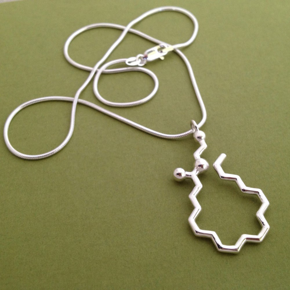 Image of anandamide necklace
