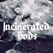 Image of VUYVR | Incinerated Gods LP
