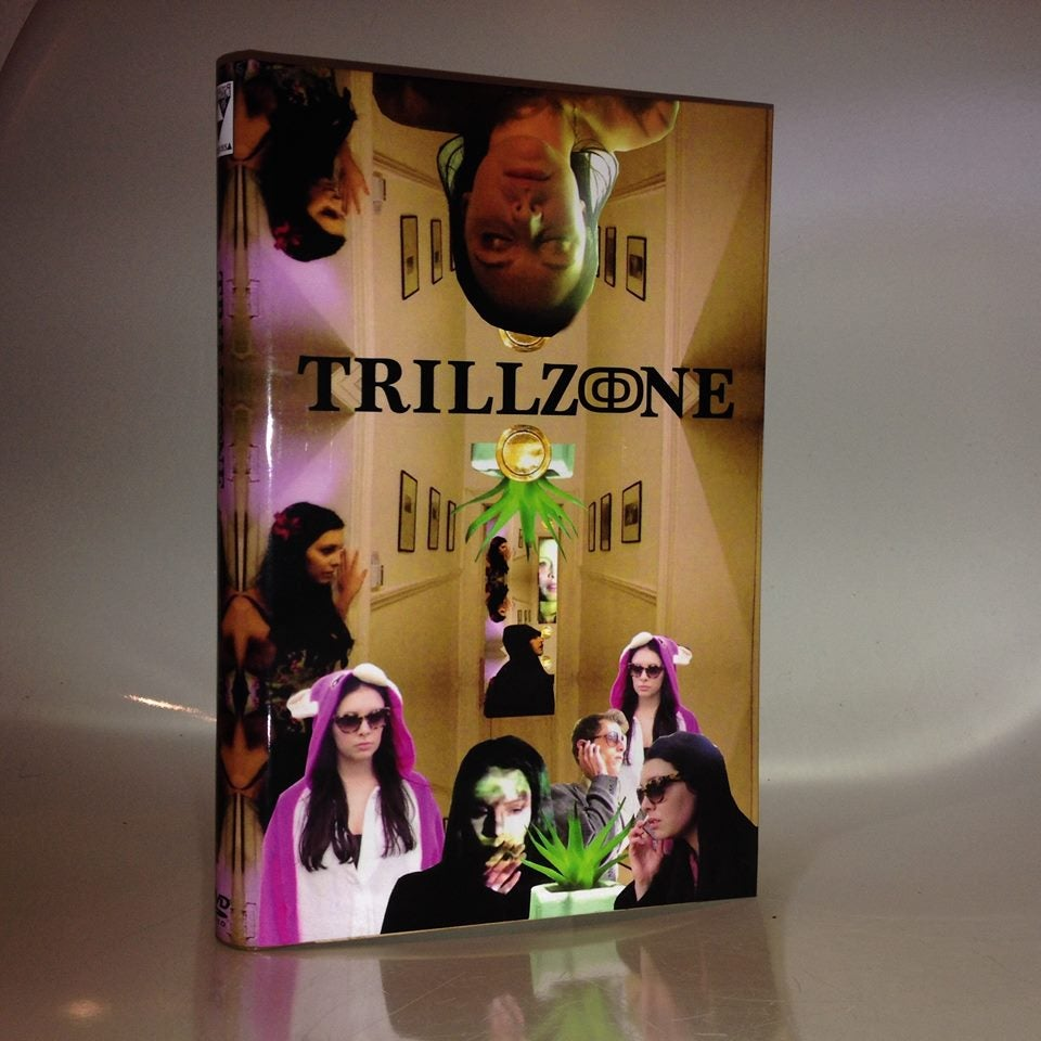 Image of Trillzone (2014, Directed by Nikhil Singh) DVDr HARDBOX