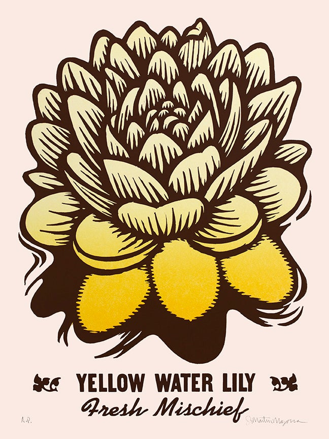 Image of Yellow Water Lily