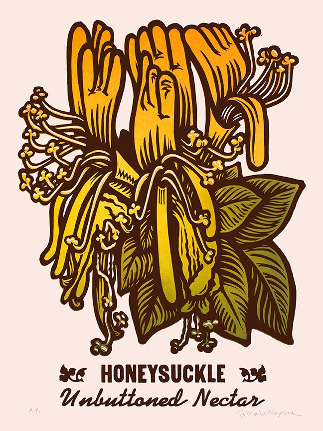 Image of Honeysuckle