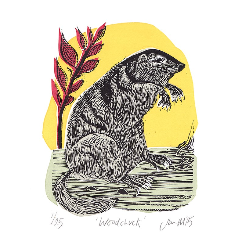 Image of 'Woodchuck' - Linocut and screenprint
