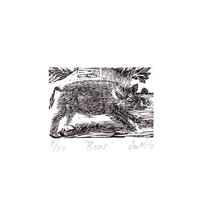 Image of 'Boar' - Wood engraving