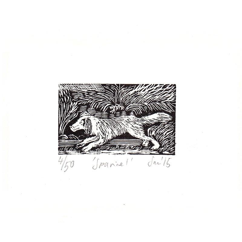 Image of 'Spaniel'- Wood engraving