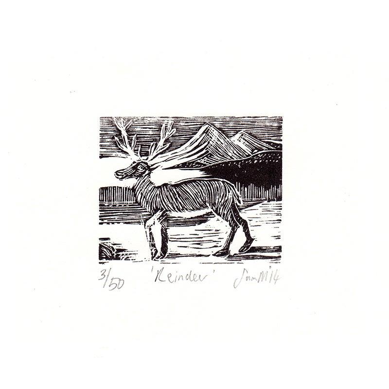 Image of 'Reindeer'- Wood engraving