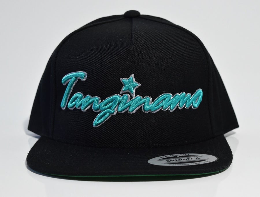 Image of TL Teal SnapBack