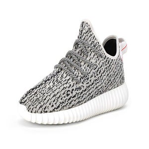 Image of Yeezy Boost 350