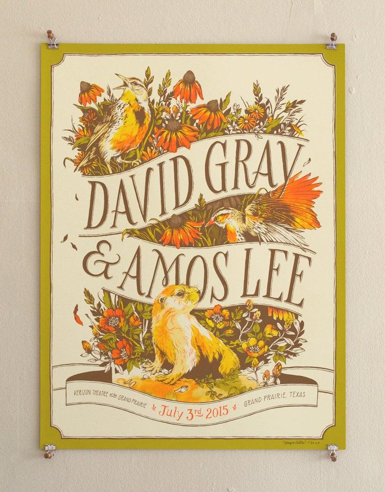 Image of David Gray & Amos Lee, Grand Prairie TX (AP)